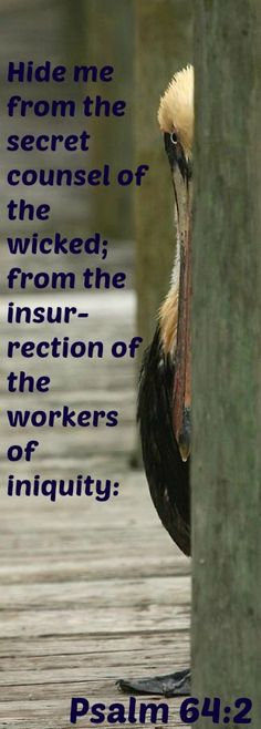 Psalm 64:2 Hide me from the secret counsel of the wicked; from the insurrection of the workers of iniquity: