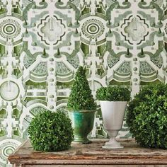 Topiary Hintergrund Urban American Dry Goods Co. Topiary-Hintergrund Urban American Dry Goods Co. Source by skybunnyblue The post Topiary Hintergrund Urban American Dry Goods Co. appeared first on My Art My Home. Gracie Wallpaper, Cole And Son Wallpaper, Green Wallpaper, Wallpaper Ideas, Flower Wallpaper, Green And White Bedroom, Green Rooms, White Rooms, Cole Son