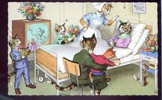 Alfred Mainzer Animated Cats in Hospital & Nurse.