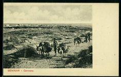 Somali postcard-Caravan- Benadir