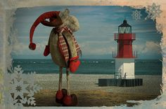 Our office reindeer's search for a new home took him all the way to the Point of Ayre!