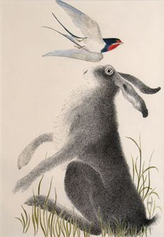 Spring Hares...    I think these paintings of hares by Anne Mieke Lumsden are just delightful! They make me want to sing and dance right along with them...