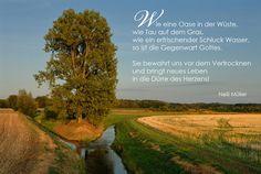 Wie eine Oase in der Wüste, wie Tau auf dem Gras, wie ein erfrischender Schluck Wasser, so ist die Gegenwart Gottes. ... Nelli Müller