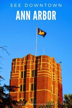 Explore Downtown Ann Arbor things to do. Try Downtown Ann Arbor restaurants and bars. Learn about places to eat in Ann Arbor. Take a walk on the University of Michigan campus. University Of Michigan Campus, Michigan Usa, State University, Travel Around Europe, Travel Around The World, Ann Arbor Restaurants, Ann Arbor Art Fair, Cheerleading Pyramids, Usa Cities