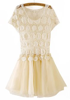 Apricot short sleeve lace flare dress.