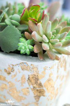 DIY white cement & gold leaf planters   www.evenyaru.com