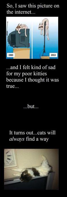 Yepp it's true :D