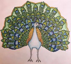 Look at this gorgeous peacock by Eve Vingoe! She's really gone all out on this month's free download and Mr Peacock is looking proud and verrrrry pretty     Link in bio of you'd like a bash at this yourself (free download until the end of March)