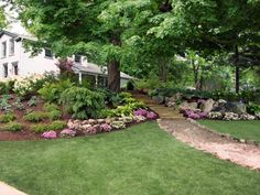 FRONT YARD planting ideas - Google Search