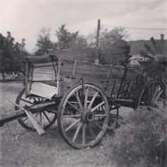 Over 100 year old horse drawn wagon.  -taken by Ariann Black