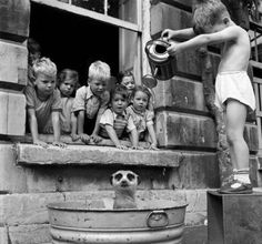ᙖℓąƈƙ & ᏇᏲᎥ৳ҽ Ƥђσ৳σʂ ~ Pinterest,  Children washing a Meerkat, South Africa, 1950.