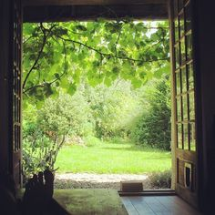 Un intérieur ouvert sur la nature