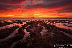 San Elijo State Park Sunset ~ California