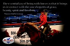 The essential joy of being with horses...
