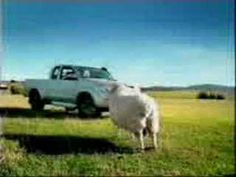 Toyota Hilux Commercial - YouTube
