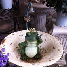 Bathing frog