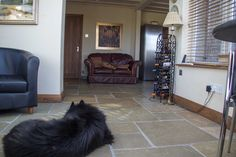 Even the dog loves this Jaipur aged flagstone flooring - stylish and practical!  #flagstone #livingroom