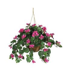 Nearly Natural Bougainvillea Hanging Basket Silk Plant, Green (€52) ❤ liked on Polyvore featuring home, home decor, floral decor, plants, green, wicker baskets, flower arrangement, green tree, flower stem and flower trees
