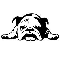Cheap car alarm key ring, Buy Quality stickers coffee directly from China car badges stickers Suppliers: Hot English Bulldog Tired Puppy Dog Pet Reflective Car Stickers Bulldog Puppies, Dogs And Puppies, Bulldog Mascot, Rescue Dogs, Pet Dogs, Bulldogge Tattoo, Bulldog Drawing, Cameo, Dog Car