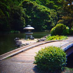 a park at Tokyo