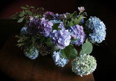 fairest flowers farm: blousy