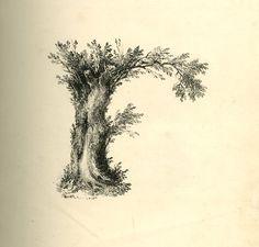 alphabet paysage ancien 06 Un alphabet en paysages vers 1820  revue de web