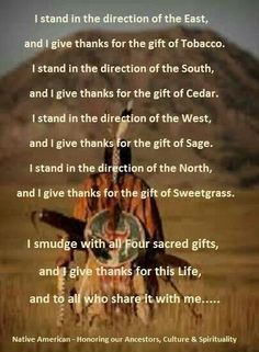Cherokee Indian Quotes Glamorous I'm Proud To Be A Cherokee Woman Warrior  Cherokee Nation My
