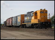 M.J., Mark, and Cody sort out box cars at Ontario Northland's Express Freight shed at Cochrane September 4th.