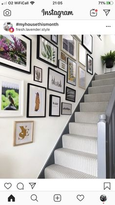 Likes, 50 Comments - Fresh Lavender Style Bank Holiday Weekend, Interior And Exterior, Lavender, Gallery Wall, Canning, Amazing, Frame, House, Instagram