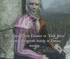 Dunmer worshipers
