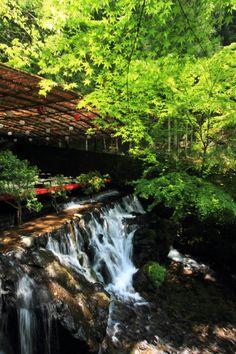 貴船の川床 : 京都写真(Kyoto Photo)