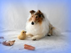 needle felted Rough Collie | … | Flickr - Photo Sharing!