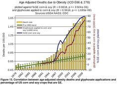 Glyphosate versus obesity