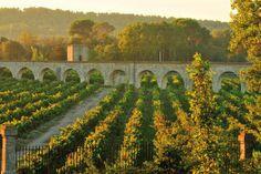 Chateau de Jouarres, #Frankrijk, #Languedoc. #reizen #travel #travelbird #landschap