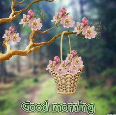 Good morning new image