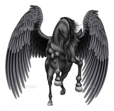 Black Pegasus Winged Horse
