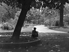 Parque Dom Pedro * Meados de 1950 * (German Lorca)