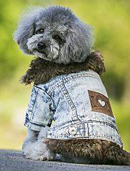 Cane+Cappottini+Giacche+di+jeans+Abbigliamento+per+cani+Cowboy+Tenere+al+caldo+Di+tendenza+Jeans+Nero+Blu+Costume+Per+animali+domestici+–+EUR+€+15.17