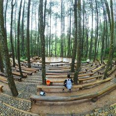 Tinuku Open air theater in Mangunan pine forest constructed adjust sloping contours and without removing trees Outdoor Stage, Outdoor Theater, Outdoor Art, Landscape Architecture, Landscape Design, Open Air Theater, Le Havre, Pine Forest, Forest Park