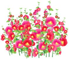 Flowers PNG Clipart Image