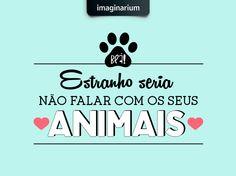 Quem tem bichinho em casa fala cachorrês, gatês, tartaruguês... <3 Alguém aí se identifica? ;)