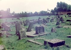 Sambor, Poland, Postwar, Gravestones in the Jewish cemetery. All Jewish cemetery headstones were destroyed by nazi and town people during the war. Many headstones where used for roads and streets in which Jews were forced to lay the head stones