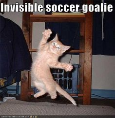 """Wow if this is an invisible soccer goalie, instead of an invisible soccer goal, I guess I can see invisible cats..."""""""