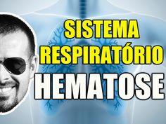 Vídeo Aula 105 - Anatomia Humana - Sistema Respiratório - Hematose: A Tr...