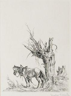 Výsledok vyhľadávania obrázkov pre dopyt Jaroslav Vodražka Moose Art, Animals, Animais, Animales, Animaux, Animal