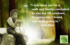 Walking Quotes by Muir, Thoreau, Kierkegaard and Davies Life Is Beautiful, Beautiful Words, Beautiful People, Walking Quotes, Great Quotes, Inspirational Quotes, Mother Nature Quotes, John Muir Quotes, Native American Wisdom
