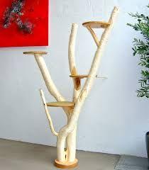 Bildergebnis für holz katzenbaum