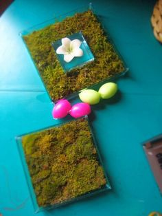 Easter moss terrarium. Floating candle terrarium.