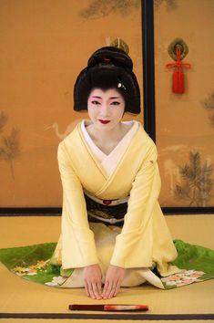 京都の芸妓『とし夏菜』さん写真集~2017年01月29日 - OpenMatome
