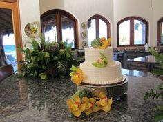 Beautiful Private home wedding done at Punta Pescadero & El Cardonal.